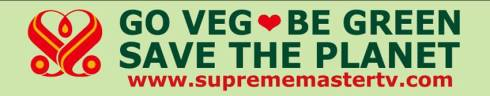 go-veg-be-green-save-the-planet