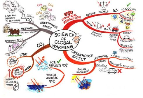 copy-of-science-mindmap-blog